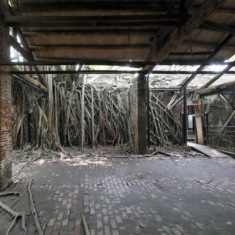 台南 安平樹屋